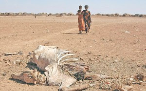 African Drought