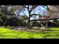 The Park At San Marino