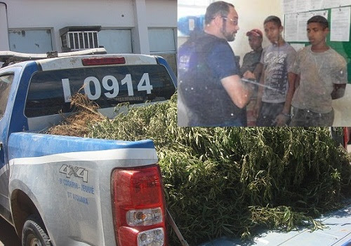 Três pessoas foram presas  na fazenda