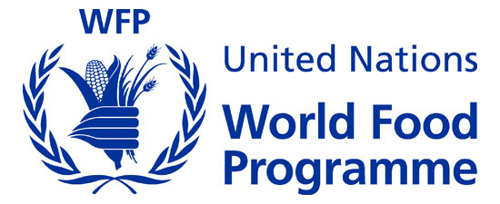 Country Director at United Nations World Food Programme (WFP)