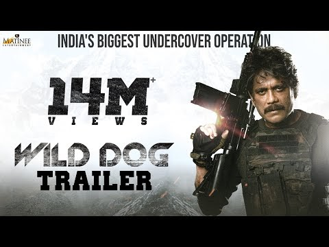 Wild Dog movie review