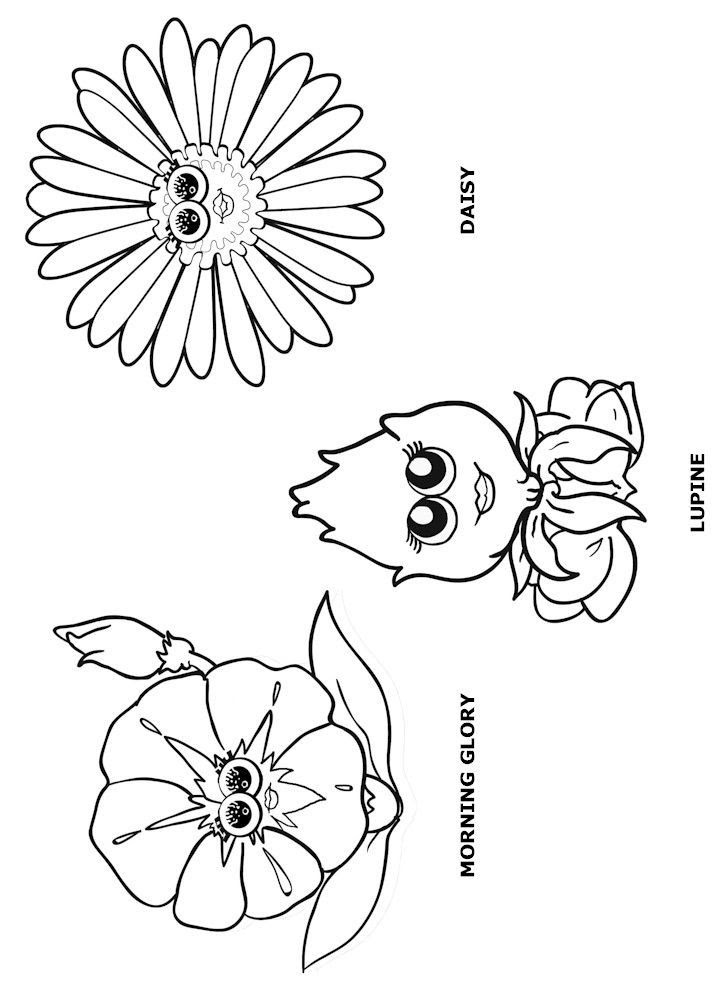 Welcome To The Daisy Flower Garden Journey Coloring Pages Clip Art Library
