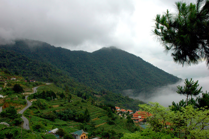 Free Internet Access In Tam Dao Tourist Area
