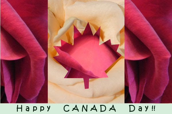 Canada Day by Angie Ouellette-Tower for godsgrowinggarden.com photo Canada_zpscdb52d09.jpg