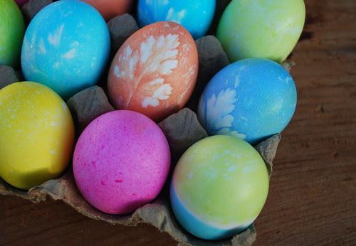 eggs in carton 2
