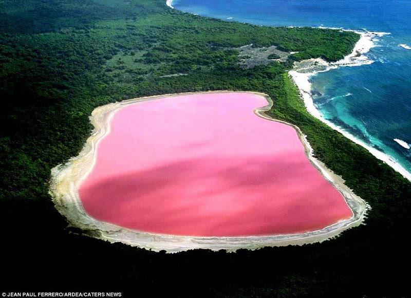 lake  hillier pink  lake in  australia (1)