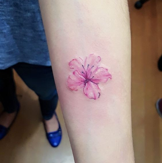 62 Ideas Para Tatuajes De Flor De Cerezo O Flor De Sakura