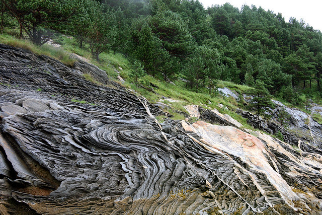 IMG_4455 saltstraumen scenery