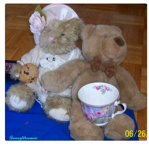 Lady and Sir Bearington 2