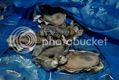 http://i599.photobucket.com/albums/tt74/yjunee/blogger/DSC_0135.jpg?t=1266294163