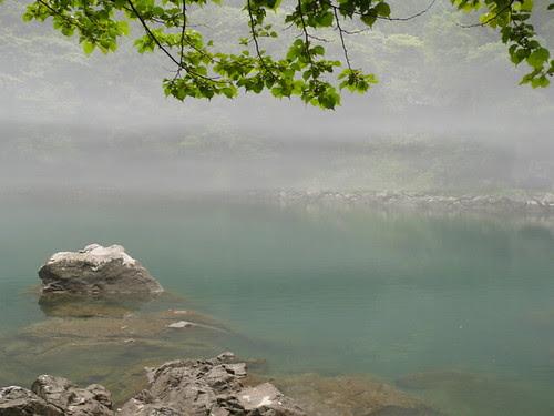 Mist on the Tama River, near Okutama