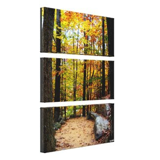 Autumn Trees by Nature Path Stacked Canvas Print Canvas Print