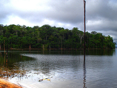 Balbina Dam-4