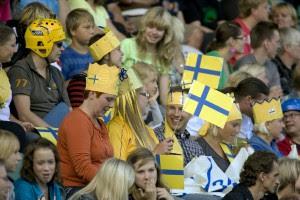 Шведских болельщиков поселят в Гидропарке