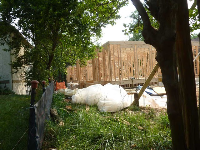 P1110519-2011-06-05-Morningside-teardown-1st-floor-framing-SE-Facade