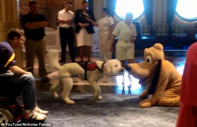 Hello there: Bingo the service dog meets Pluto after being invited to a 'play date' on a Disney Fantasy Cruise