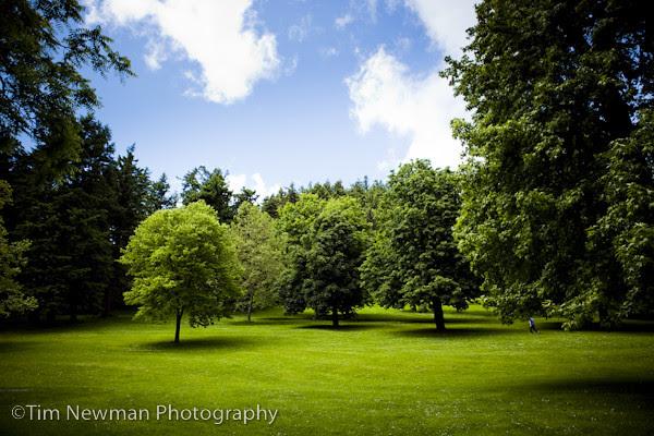 The beautiful park shoot