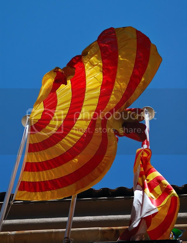 Catalonia's Flag Waving in the Wind[enlarge]