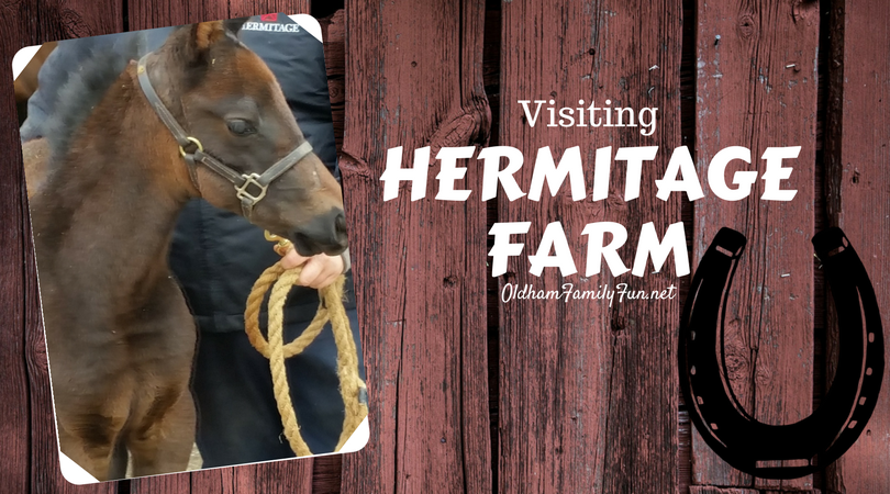 photo Visiting Hermitage Farm_zpspqz2v54a.png