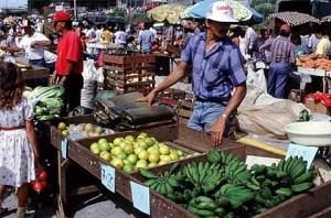 Micro y pequeñas empresas agrícolas podrán acceder a exoneración de impuestos