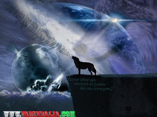 rainhearth__nightwolf_nightwolf4