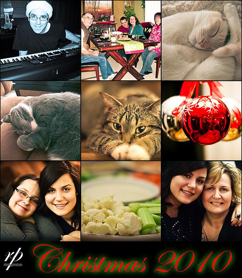 ~ 359/365 Christmas 2010 ~