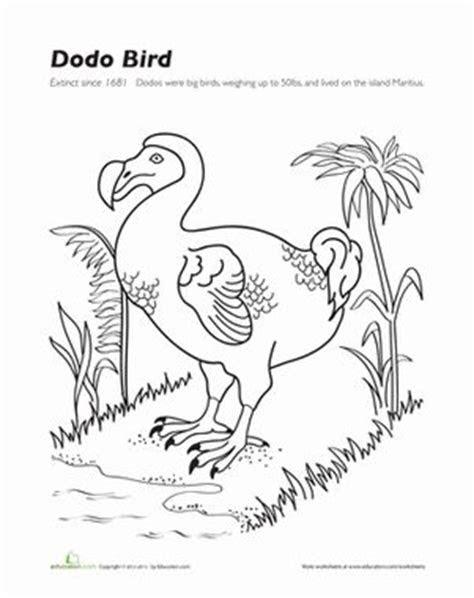 dodo bird  grade birds  worksheets