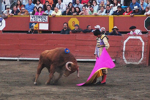 Sebastián Castella indulta toro en Acho 2008