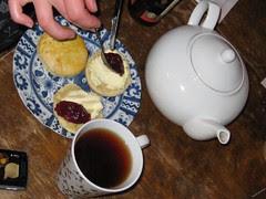 ceam tea in oslo