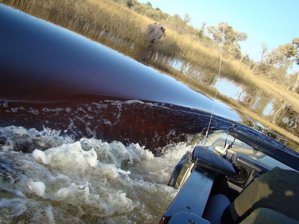DSC07398 Landcruiser wading