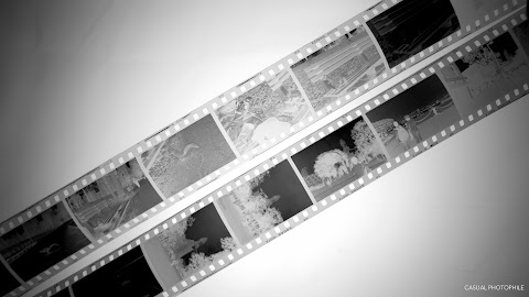 How To Develop Black And White Film