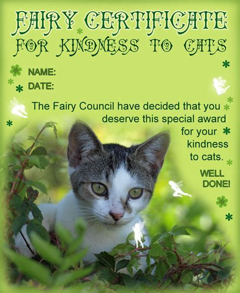 Fairy Certificate for Kindness to Cats   Rooftop Post