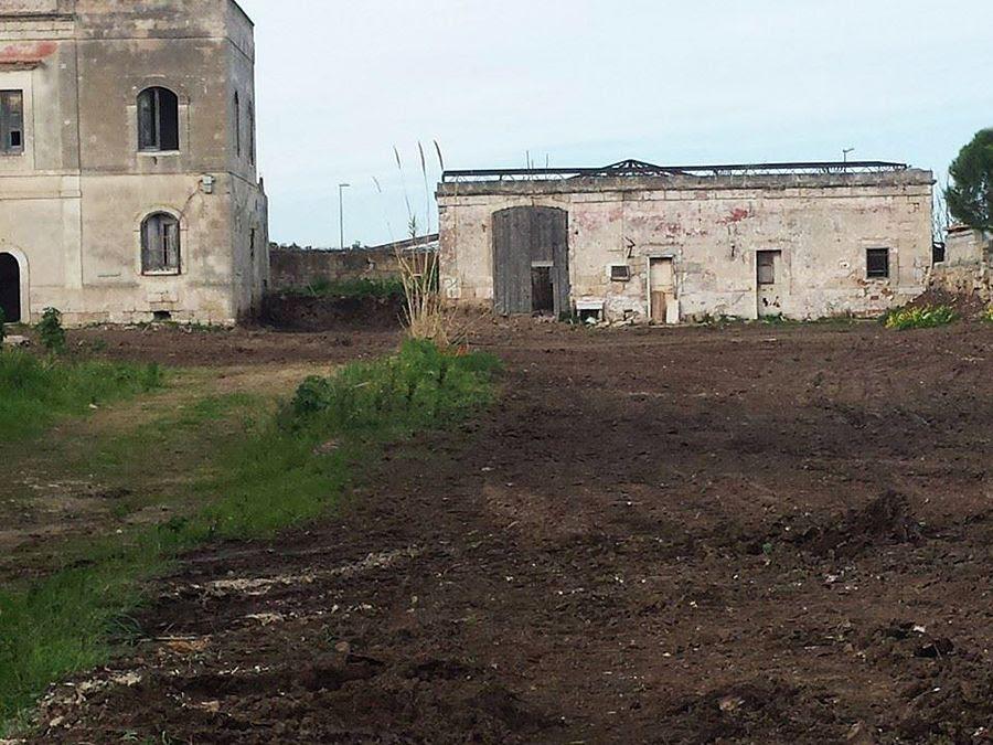 Puglia - Il sito neolitico di Palese (Bari) dopo la ricopertura di terra