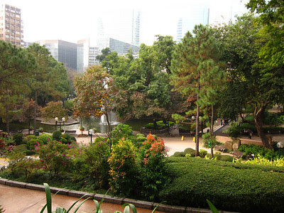 the beauty and serenity of Kowloon park, surrounded by towering skyscrapers.