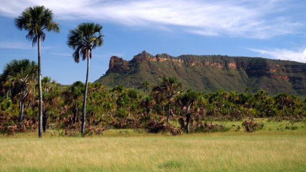 Reserva Extrativista de Recanto das Araras de Terra Ronca