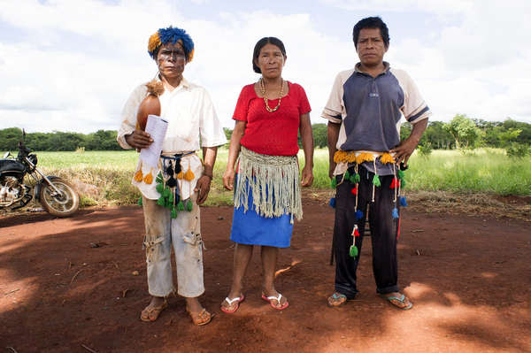 For hundreds of years the Guarani have been searching for what they call 'the land without evil'. Today, this manifests itself in a more tragic way: profoundly affected by the loss of almost all their land in the last century, the Guarani suffer a wave of suicide unequalled in South America.