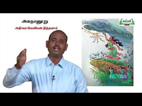 யாமறிந்த மொழிகளிலே Std 11 தமிழ் அகநானூறு Kalvi TV