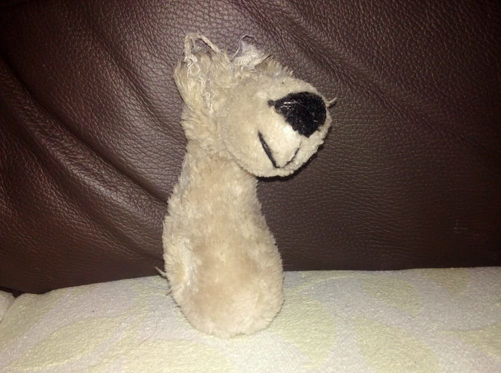 Roly Bear