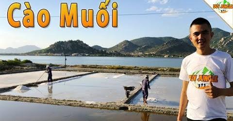 Muối được tạo ra từ hố bùn | Cách làm Muối ở Ninh Thuận | Duy Jungle