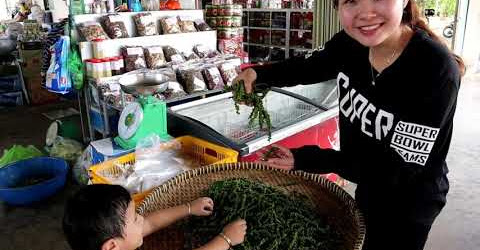 Khám phá Vườn Tiêu Tại Phú Quốc gặp em bé cực kỳ dễ thương😍😍
