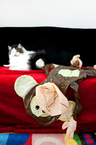 Moo and dead monkey