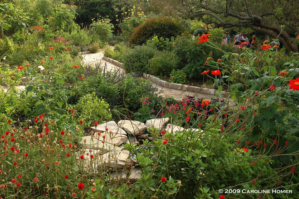 Old-Fashioned Garden