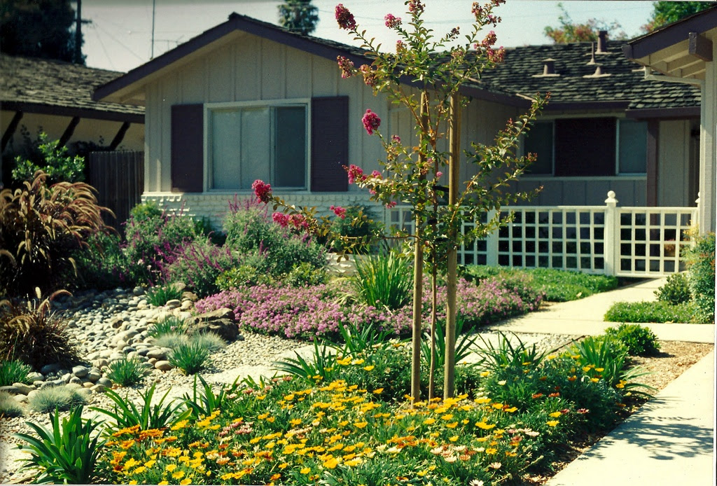 Water Efficient Transformation From An All Lawn Front Yard To Low