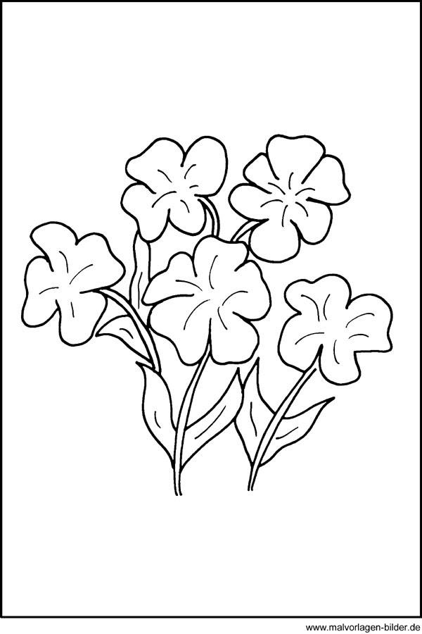 kostenlose Malvorlagen - Blumen - Fensterbild
