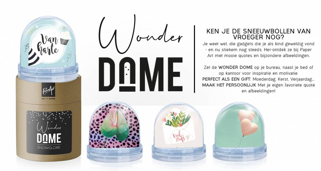 Snowglobe You Light Up My Life Wonder Dome Kunstzinnig Kado En