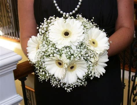White Gerber Daisy Bouquet   white gerbera daisy bouquets