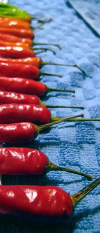 colored chilis