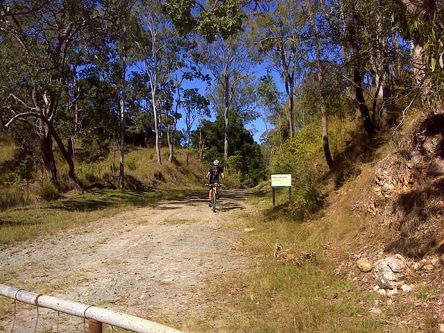 Borgan Road
