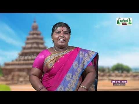 8th Tamil Bridge course உடல் நலம் பேணல்  அலகு 9 Kalvi TV