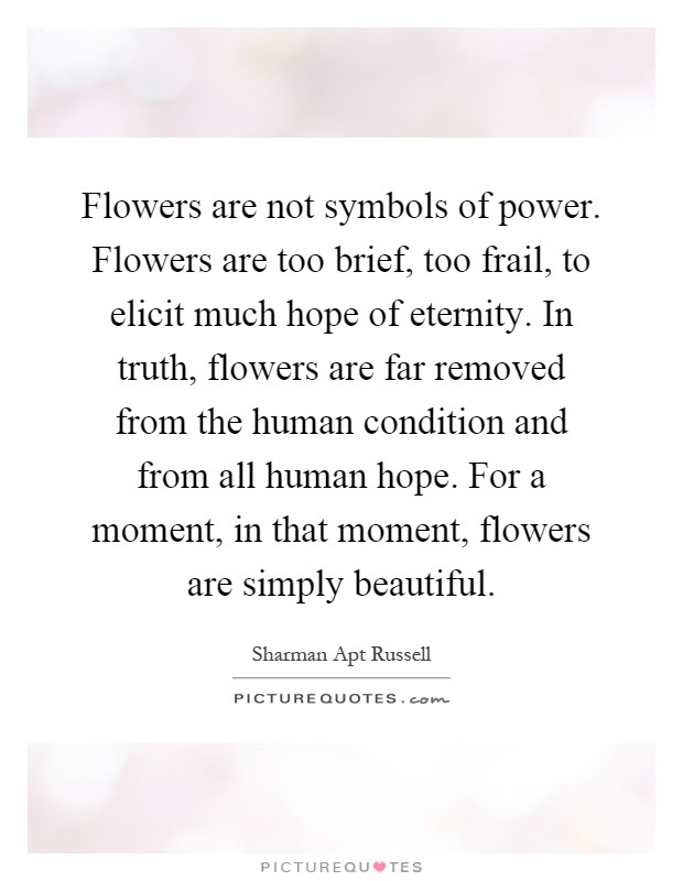 Flowers Are Not Symbols Of Power Flowers Are Too Brief Too